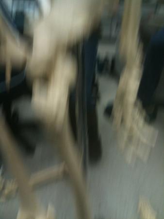 AnatandPhys Bones Fischer Williams Photo0073